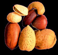 Nuts make up a very diverse group, but whatever their type, they offer functional advantages in a variety of applications and, as studies are now increasingly showing, nutraceutical benefits as well. Photo courtesy of International Tree Nut Council