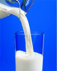 Consumers are most familiar with milk as a source of calcium and vitamin D, essential nutrients for bone health.