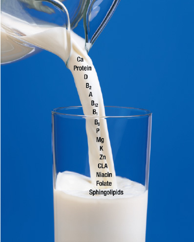 Fig. 1—Milk serves as a source of important nutrients such as calcium, whey protein, conjugated linoleic acid, and essential vitamins and minerals.