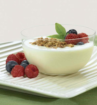 Prebiotic ingredients—inulin and oligofructose—provide fi ber enrichment to yogurt and other products without affecting taste or texture.