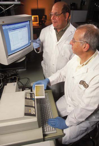 USDA scientists review results of a rapid immunoassay for sensitive detection of BSE.