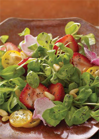 Poppy seeds, associated with bakery products, can lend a distinctive black topping to this healthy salad. This colorful product is made with greens, strawberries, kumquats, and a garnish of rose petals, with each ingredient adding to the sensory experience.