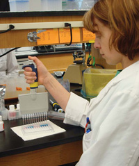 Technician conducts an ELISA quantitative assay for a specific allergen such as peanut, milk, soy fl our, or almond in a food sample. Test samples and standards are added to antibody-coated microwell strips, and substrates are added. After incubation, the technician adds a stop reagent to end substrate color development, then spectrophotometric determination of the absorption of each well is conducted to generate a standard curve and determine from it the level of allergen in the sample.