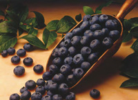 Blueberries contain anthocyanins, which contribute brain-boosting benefits.