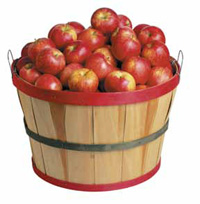Apples can be used in traditional applications such as apple pie or apple sauce. But they work well with savory ingredients as well, and can find use in such products as salsas, stir-fry, and casseroles.