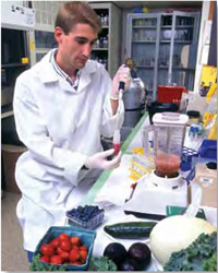 Fruits and vegetables are shown being prepared for chromatographic separation of their antioxidant components by USDA research technician John McEwen.