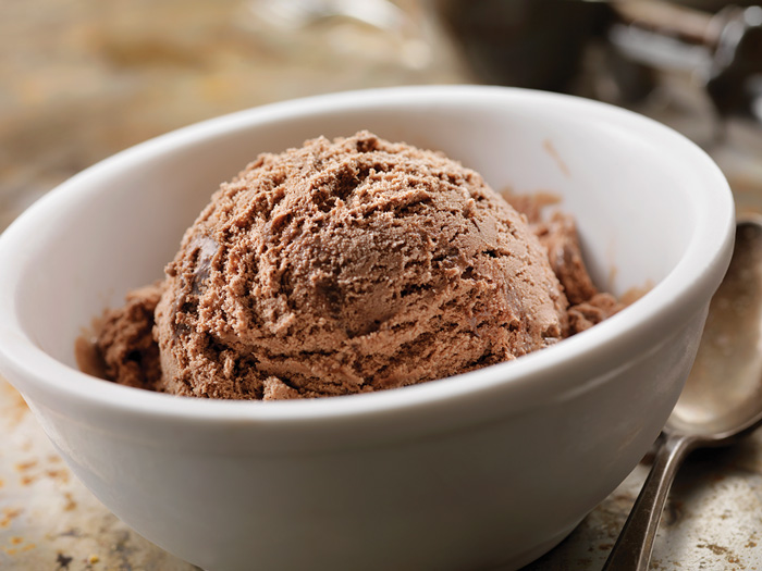 Chocolate Ice Cream in bowl