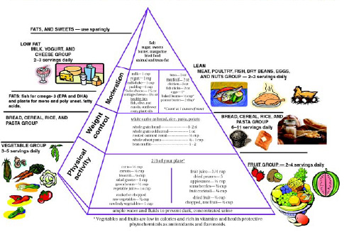 FOOD GUIDE PYRAMID FOR OLDER AMERICANS