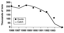 Fig. 3—Cod harvested from zone 2J3KL in the Canadian Atlantic. Harvest was equal to or less than the government quota except for the years 1989 and 1990, when the quotas were exceeded slightly. Data from FRCC (1993), redrawn from Ruitenbeek (1996)
