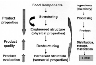 Fig. 2—Microstructural approach to food product engineering and structure property–relationships derived from it (center). This approach is centered on the product (left). Conventional view of food processing (right)