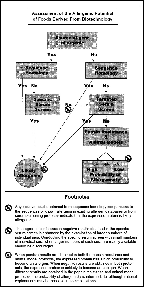 Fig. 3—Decision-tree for assessment of allergenic potential of foods derived from biotechnology (FAO/WHO, 2001).