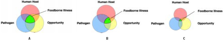 Fig. 1—Effect of reducing the factors that influence the likelihood that foodborne illness will occur