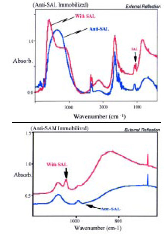 Fig. 8—SEIRA spectra of anti-Salmonella antibody with and without Salmonella. From Brown et al. (1998)