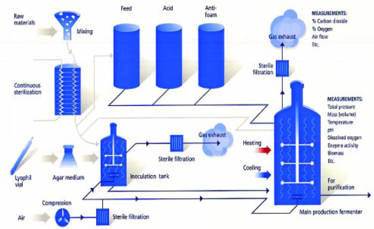 Fig. 1—Industrial process of enzyme production.