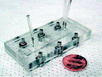 Fig. 4—Assembled microfluidic biosensor module. The biosensor is made in polydimethyl siloxane and packed in Plexiglas to provide connection to the outside world.