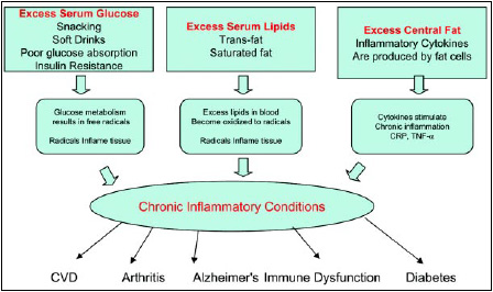 Fig.1—Factors leading to chronic inflammation.