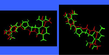 Fig. 10—Structural comparison of 4-(l-menthoxy-methyl)-2-(3´-methoxy-4´-hydroxyphenyl)-1,3-dioxolane superimposed in two views on capsaicin,the pungent ingredient in chili peppers.