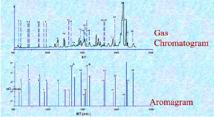 Fig. 4—Comparison of a gas chromatogram to an aromagram.