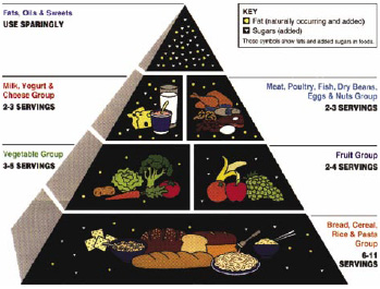 Fig. 1—USDA's Food Guide Pyramid. From Food and Nutrition Information Center at the National Agricultural Library (www.nal.usda.gov/fnic/Fpyr/pyramid.html).