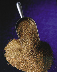 Flaxseed contains by far the highest level of lignans.