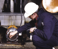 Inspector uses a swab to sample an open-back motor fan cover for microbiological contamination in a food processing plant.