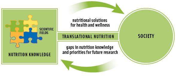Figure 1. Nutrition knowledge comes from a variety of scientific disciplines. The art of good translation in integrating this knowledge, making it accessible to society, and identifying future research that will benefit society.