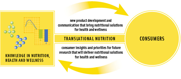 Figure 4. Translational nutrition for the food industry bridges the gap between nutrition research and business.It fast-tracks the transfer of innovation to consumers and drives forward a strategy for consumer-relevant research.