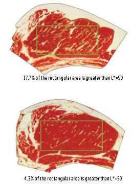 Figure 3. Quantification of the degree of marbling of a meat cut.