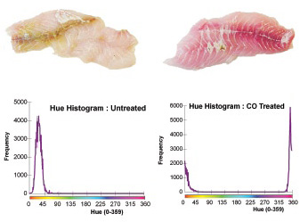 Figure 4. Hue histograms of CO-treated and untreated snapper fillets.