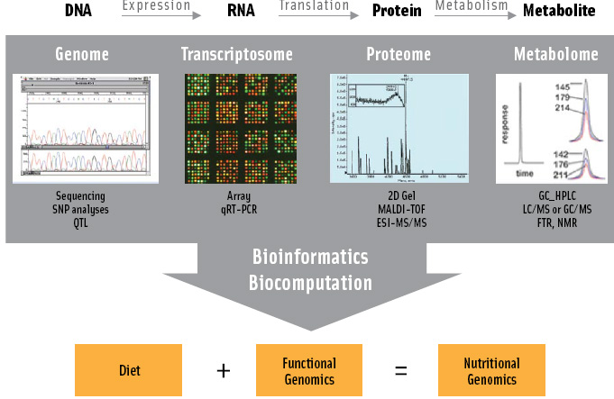 "The ""omics technologies"" include high-throughput analyses of DNA (genomics), RNA (transcriptomics), protein (proteomics), or metabolites (metabolomics) using existing technologies."