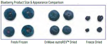 Blueberry Product Size & Appearance Comparison