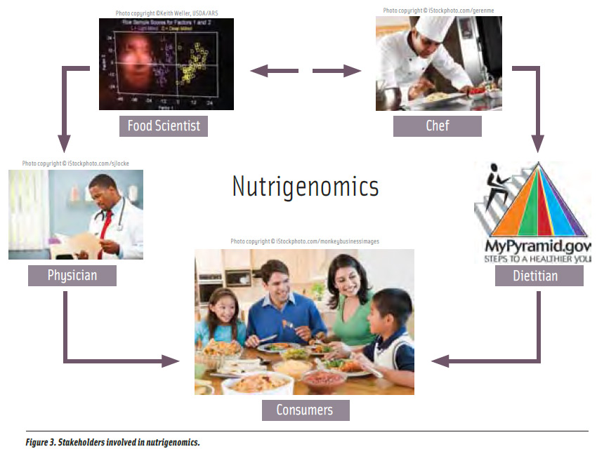 Figure 3. Stakeholders involved in nutrigenomics.