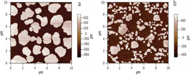 Figure 5. AFM topography image of mixed phospholipid (DPPC)-bile salt films. (a) The bright domains are caused by close packing of the aliphatic tails of DPPC into a close-packed 'solid phase' which stands taller than the surrounding background loosely-packed 'liquid phase'. As more bile salt is added (b) the size of the solid-phase domains decreases.