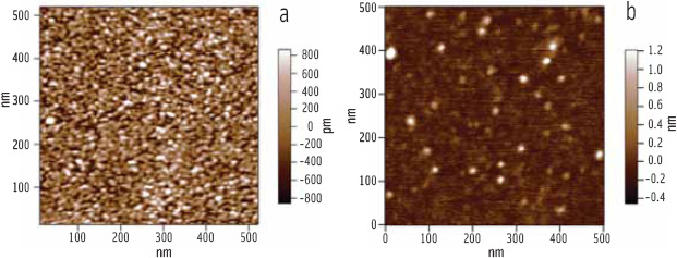 Figure 7. Comparative AFM images of lipase-colipase penetration into a mixed DPPC phospholipid-bile salt film (a) and mixed DGDG galactolipid-bile salt film(b).