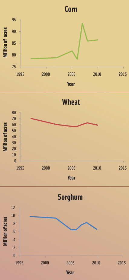 These graphs depict the rise and decline in U.S. acreage allocated for corn, wheat, and sorghum.