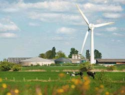 The Dutch dairy cooperative FrieslandCampina has set sustainability standards for dairy.