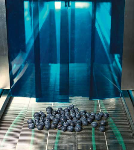 UV treatment of fruit