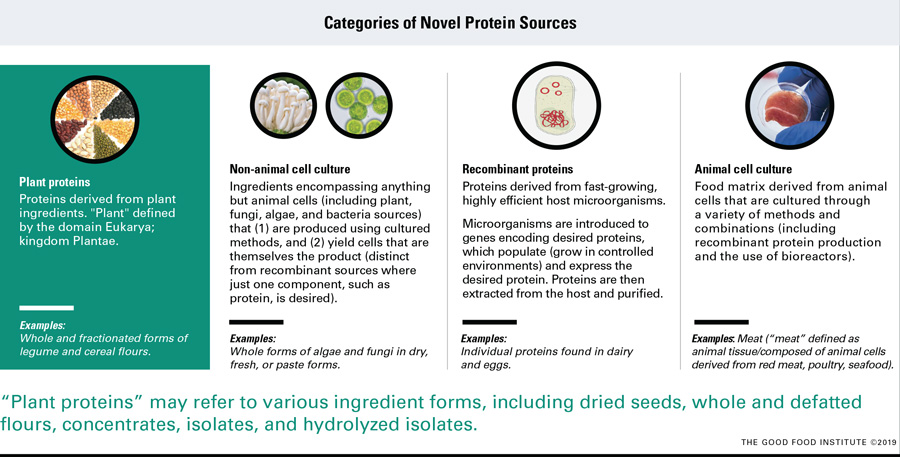 "Figure 1. Animal-free products may incorporate one or a combination of novel proteins. Categorized into four sources from a production, cost, and infrastructure perspective, novel proteins derived from plants, non-animal cell culture, and recombinant proteins may compose the current and future of ""plant-based."""