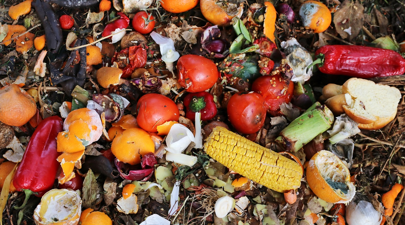 Food Waste Food Security Hunger