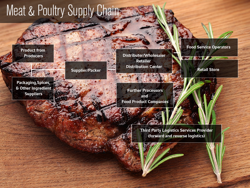 Meat Poultry Supply Chain