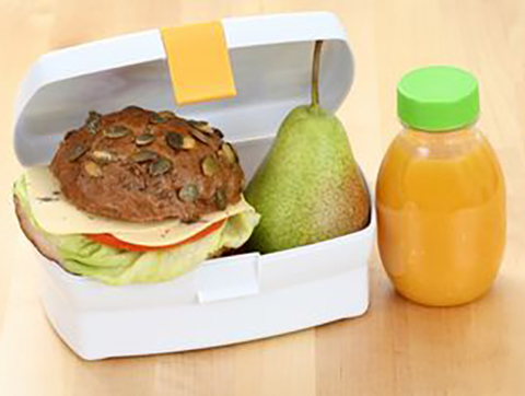 Ten Tips for Enjoying and Preparing a Safer Packed Lunch
