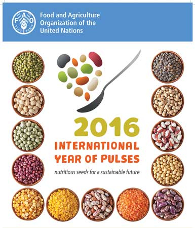 2016 the year of pulses